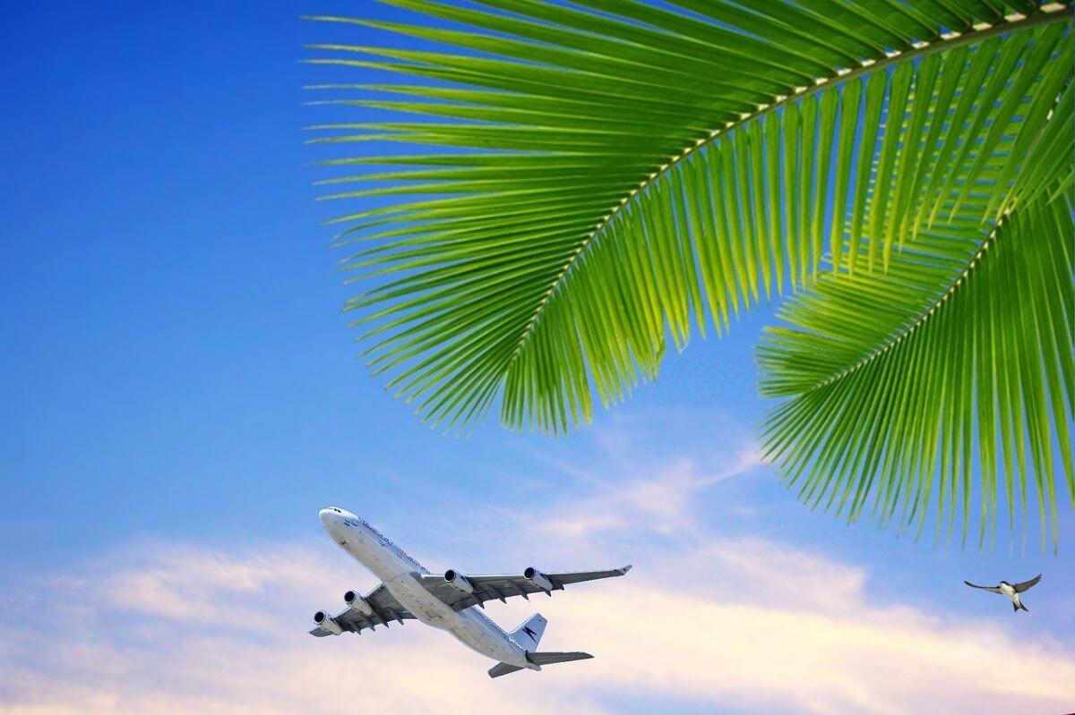 ベトナム 入国制限 飛行機 運航状況
